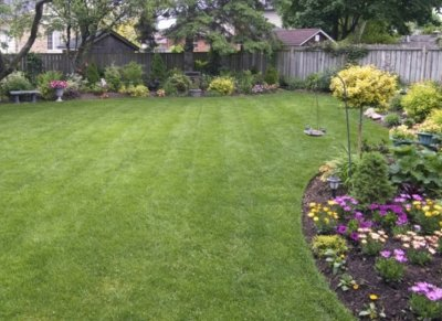 Lawncare & Landscaping